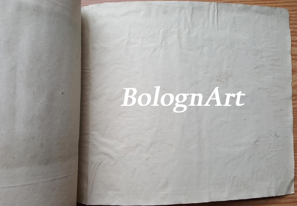 BolognArt_Guglielmini_51_LAST_tm